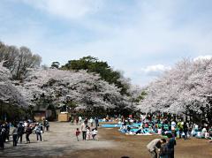 多摩川台公園(最寄り駅から徒歩約1分)
