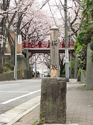桜坂(最寄り駅から徒歩約5分)